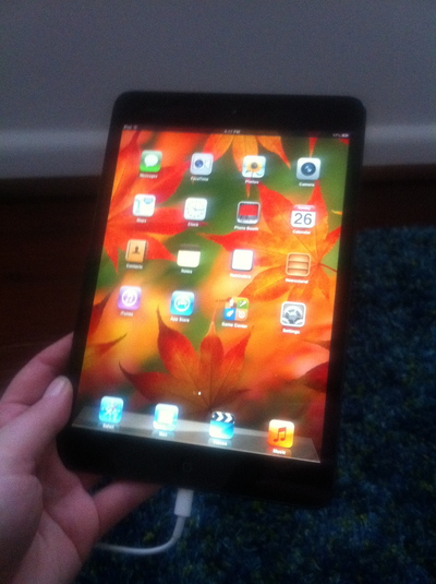 apple ipad mini 16GB wifi black, apple ipad mini wifi